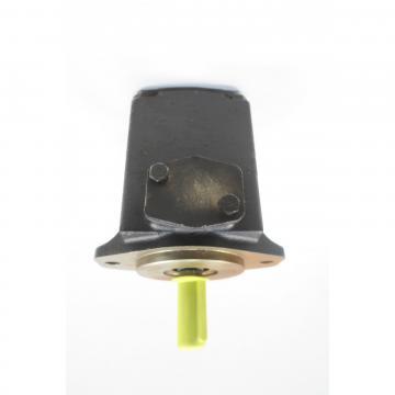 Denison T7DS-B31-2R02-A1M0 Single Vane Pumps