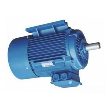 Vickers 4525V42A17-1DD22R Double Vane Pump