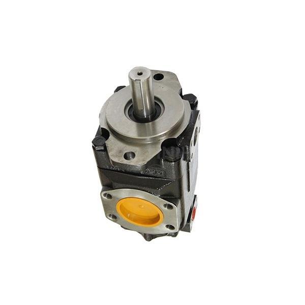 Denison PV15-1L1D-J00 Variable Displacement Piston Pump #2 image