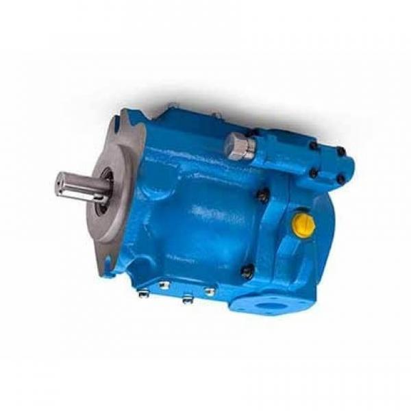 Vickers 2520V-10A11-1CC-10R Double Vane Pump #1 image
