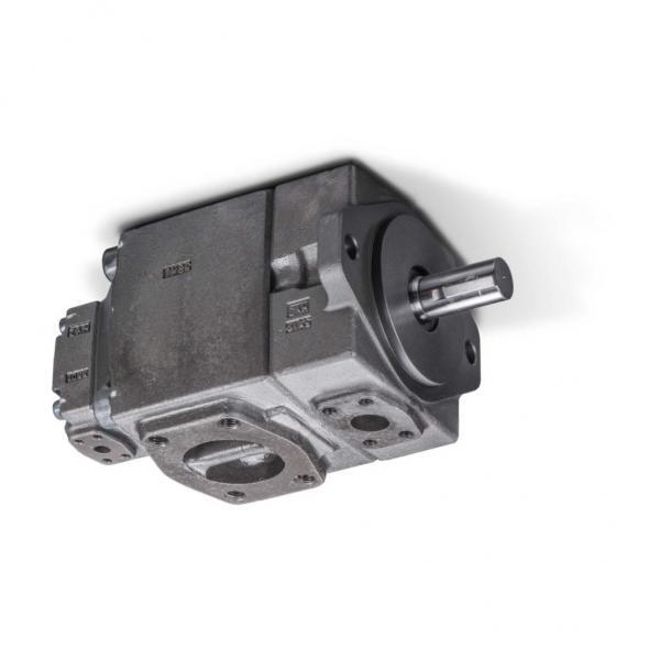 Yuken PV2R12-19-65-L-RAA-40 Double Vane Pumps #1 image