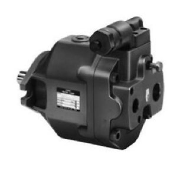 Yuken PV2R12-19-65-L-RAA-40 Double Vane Pumps #2 image